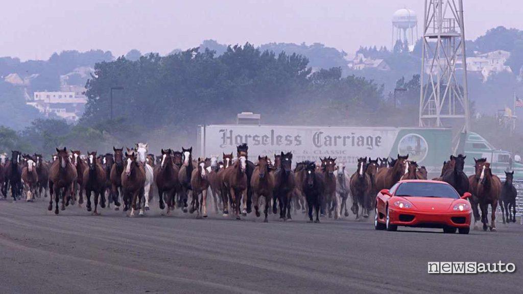 foto Ferrari da 400 cavalli vapore inseguita da cavalli
