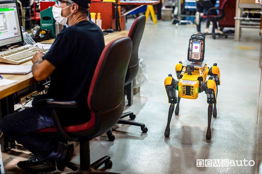 Robot a 4 zampe Fluffy Ford mentre scansiona la fabbrica