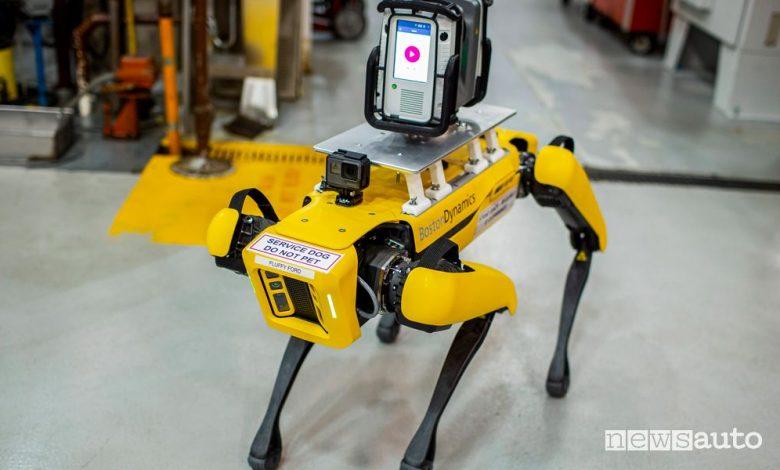 Robot a 4 zampe Fluffy Ford al lavoro