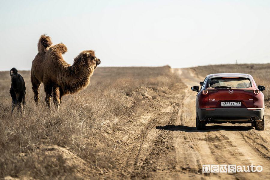 Viaggio Kazakhstan Epic Drive con la Mazda CX-30