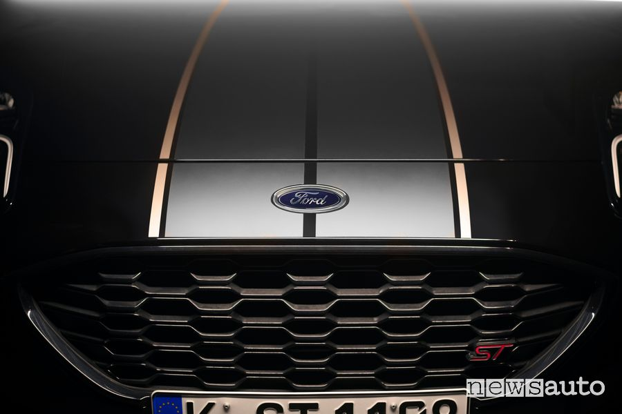 Calandra anteriore Ford Puma ST Gold Edition